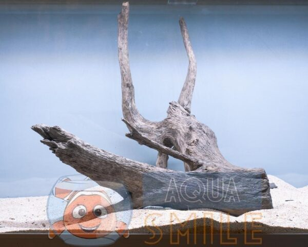 Коряга в аквариум №15 Ольха 44x38x40 см