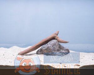 Коряга в аквариум №18 Коралловый корень 22х9х4 см