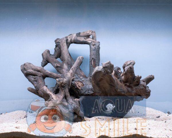 Коряга в аквариум №23 Ольха 35х25х31 см