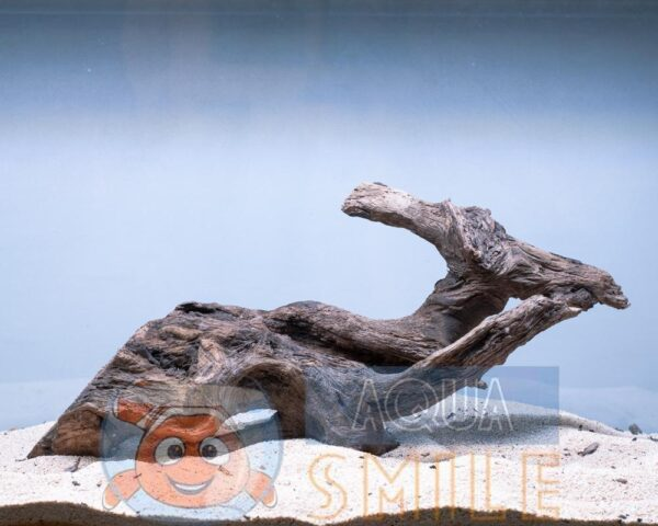 Коряга в аквариум №5 Ольха  45x15x20 см