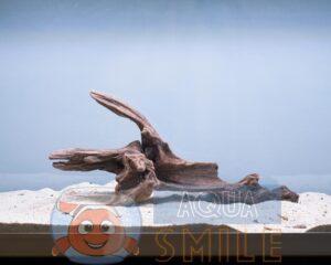 Коряга в аквариум №64 Коралловый корень 42x12x16 см