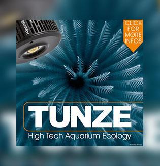 товары для аквариума Tunze баннер