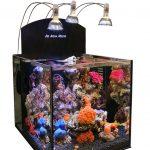 Рифовые аквариумы с тумбой