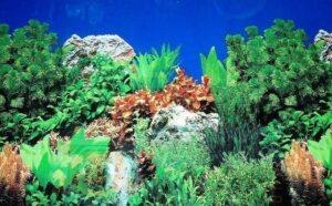 Фон для аквариума JBL 1 метр/п