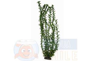 Пластиковое растение для аквариума Aquatic Plants 6808 68 см 4 шт