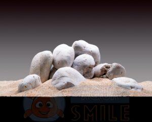 Камни для аквариума Окатыш кварцевый полярно-белый