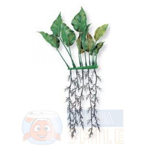 Растение пластиковое Hagen Marina Anubias roots 15 см
