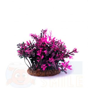 Пластиковое растение 0000-2