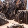 Камень для аквариума Древесный 16325