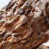 Камень для аквариума Дракон 16266