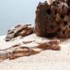 Камень для аквариума Дракон 16264
