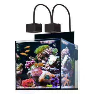 Морской аквариум Aqua Medic Cubicus Qube